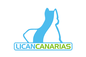 Logo-Lican