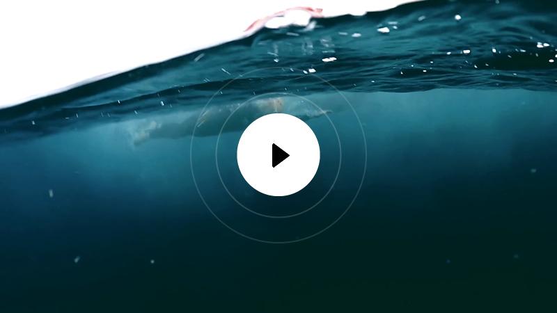 miniatura-video-1