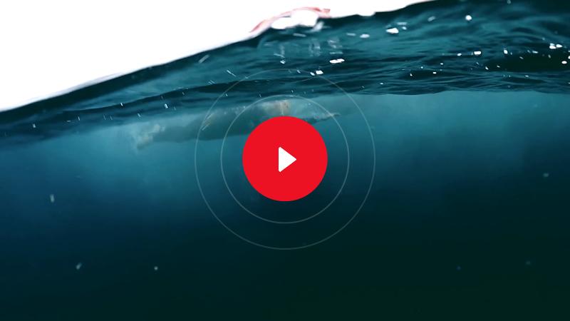 miniatura-video-2