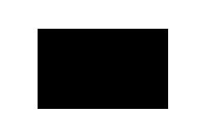 Logo-valsebike
